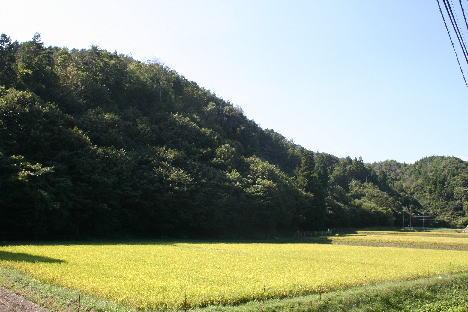 100911-2.jpg